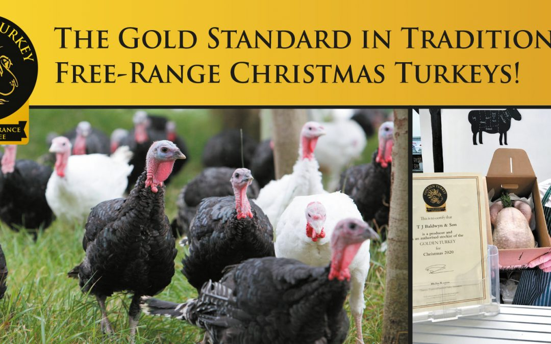 UK Turkey Farmers – Join Us! Produce Traditional Free Range Christmas turkeys to the best standards in welfare, quality and taste!