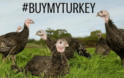 Support the NFU #BuyMyTurkey