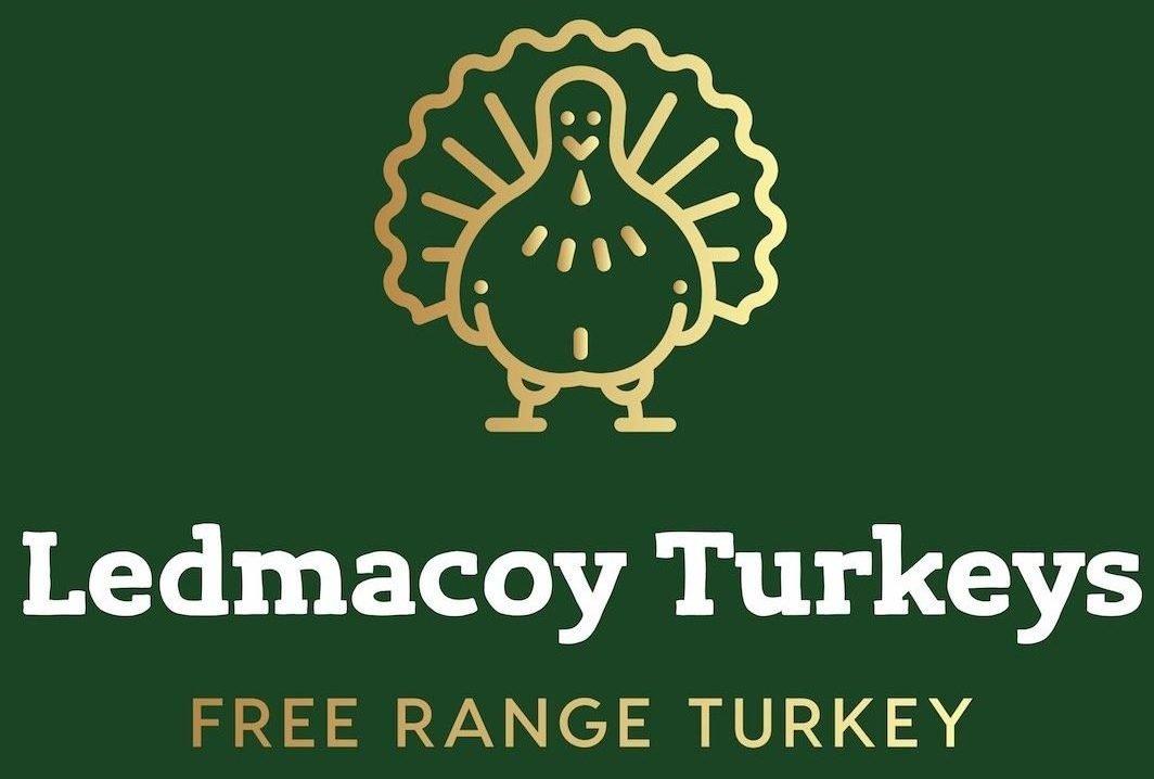Ledmacoy Turkeys