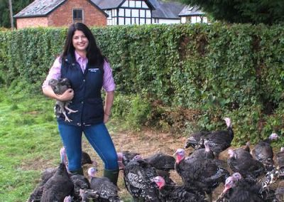 Out and About Poultry