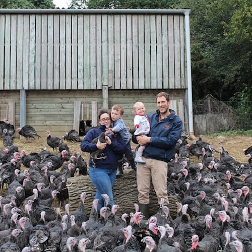 Treway Farm Turkeys